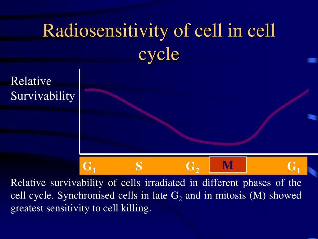 Radiosensitivity of