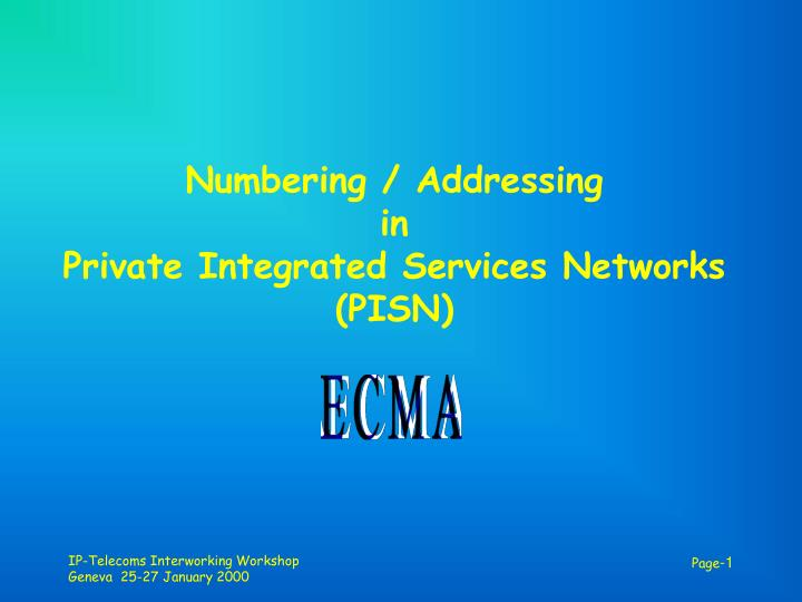 Numbering addressing in private integrated services networks pisn