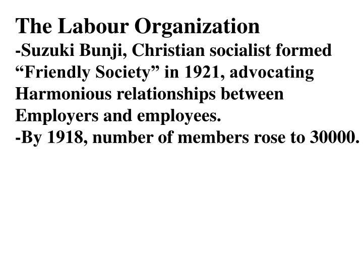 The Labour Organization