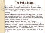 the hallel psalms16