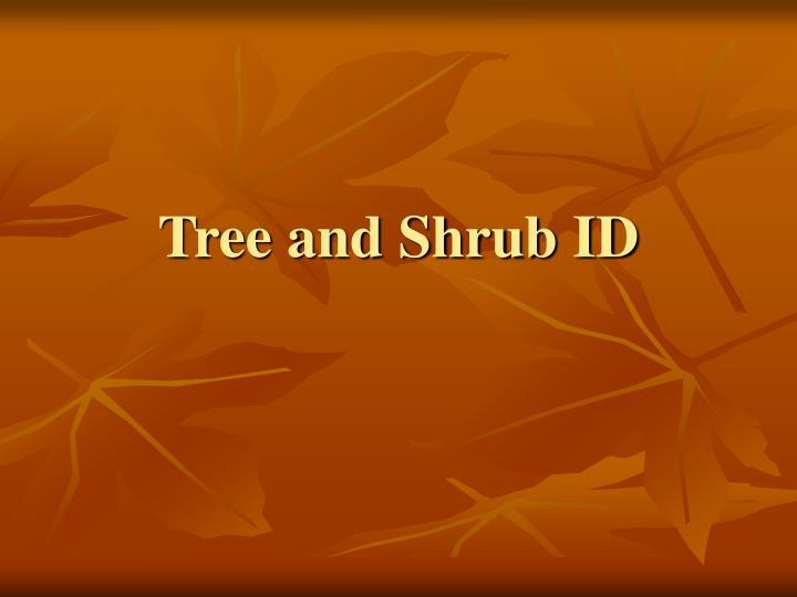 tree and shrub id n.