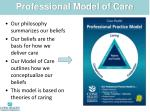 professional model of care