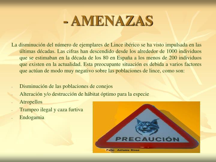 - AMENAZAS