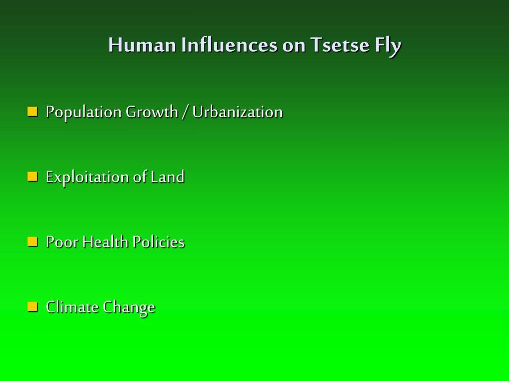 Human Influences on Tsetse Fly