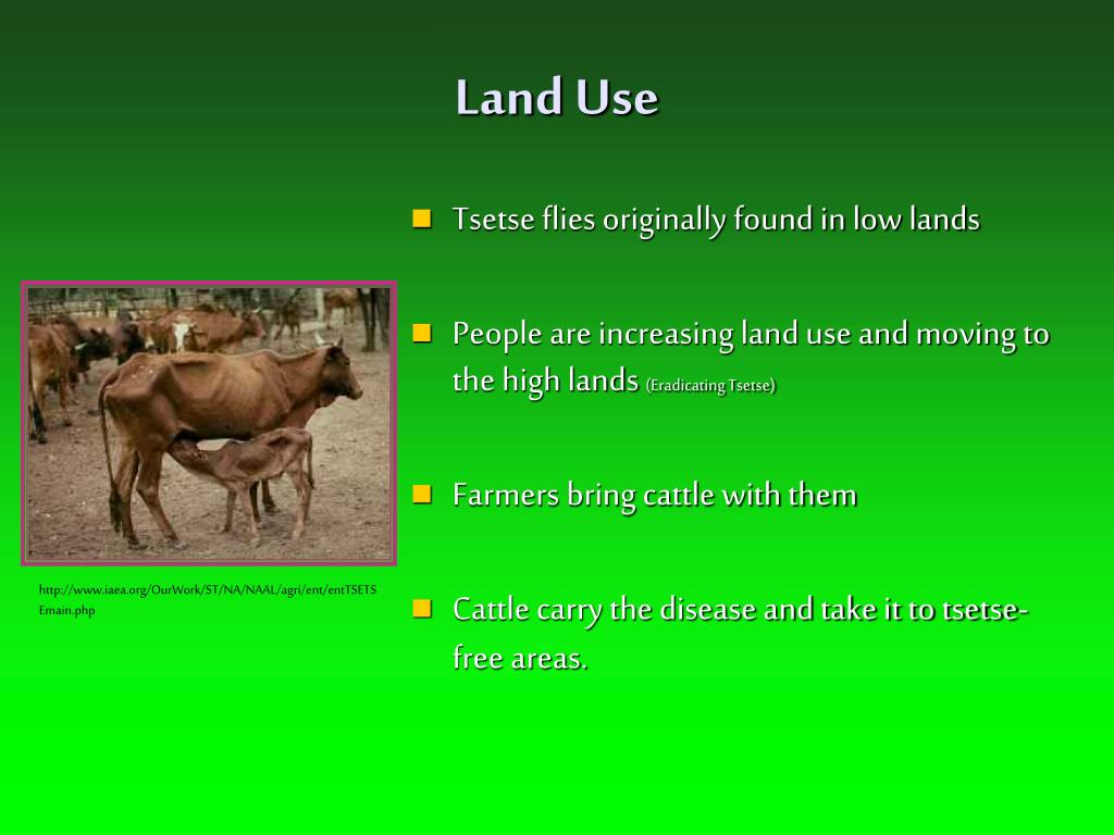 Land Use
