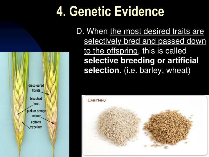 4. Genetic Evidence