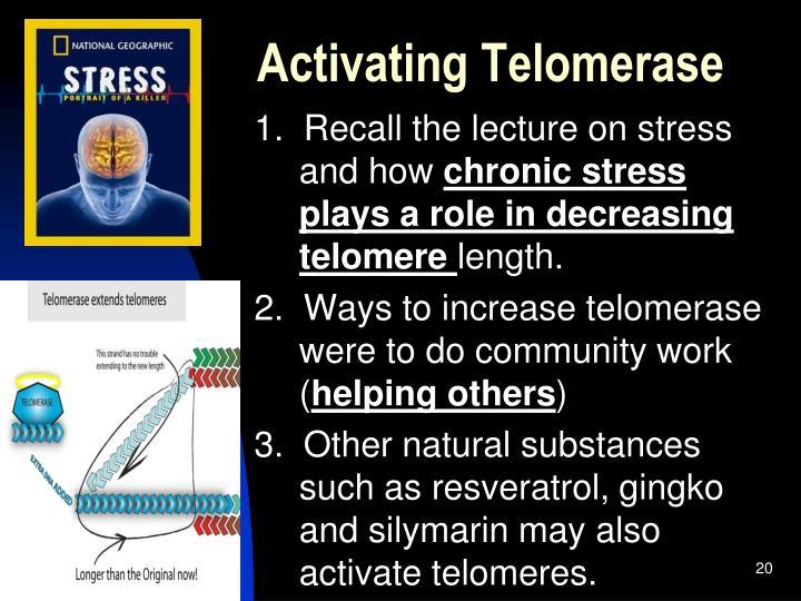 Activating Telomerase