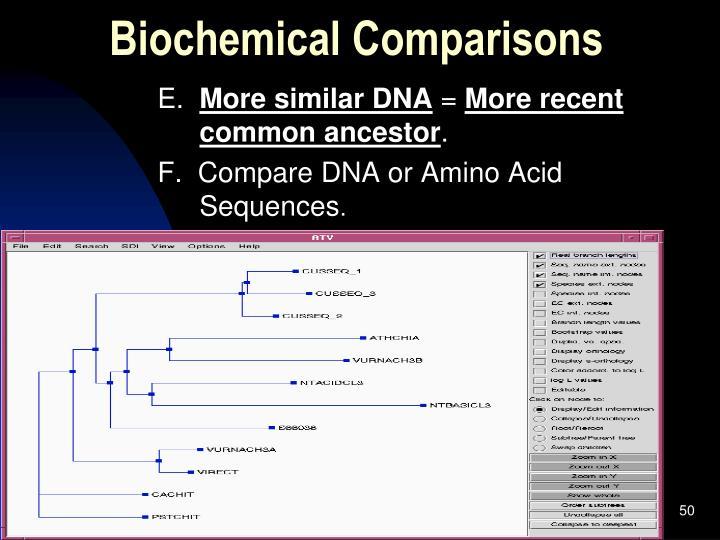Biochemical Comparisons