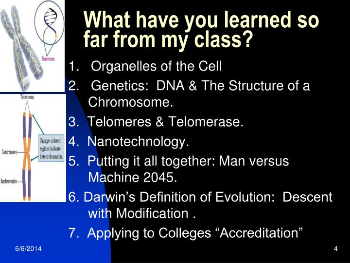 What have you learned so far from my class?