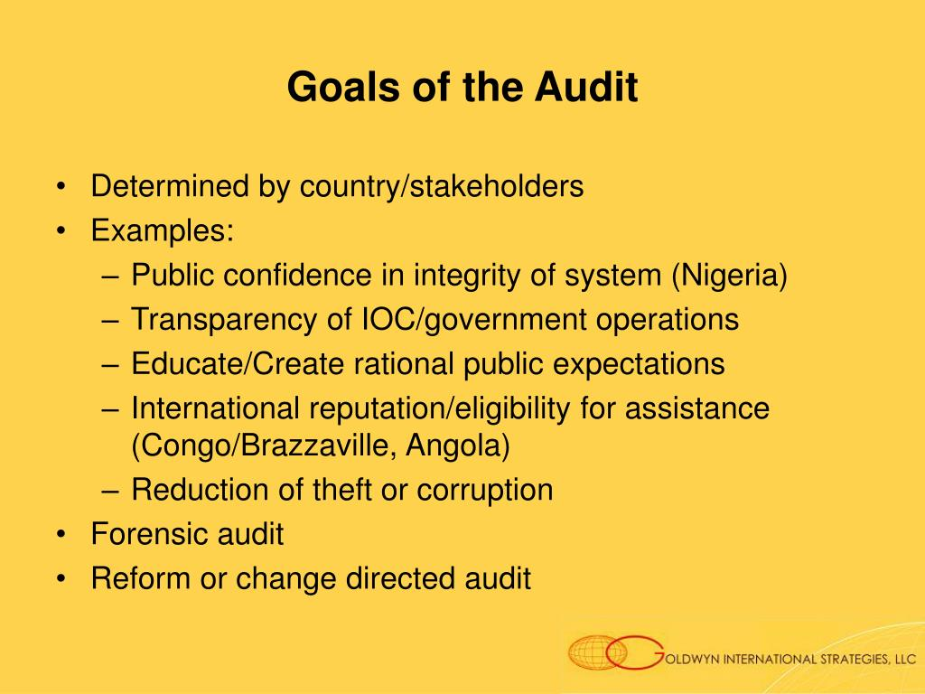 Goals of the Audit