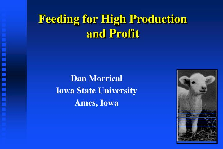 Feeding for high production and profit