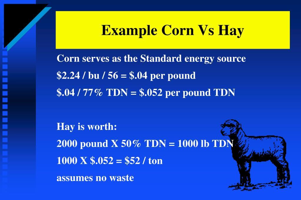 Example Corn Vs Hay