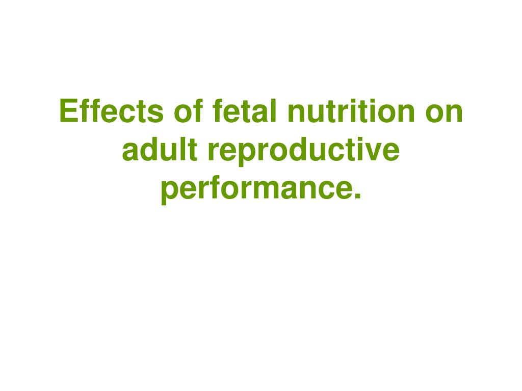 Effects of fetal nutrition on adult reproductive performance.