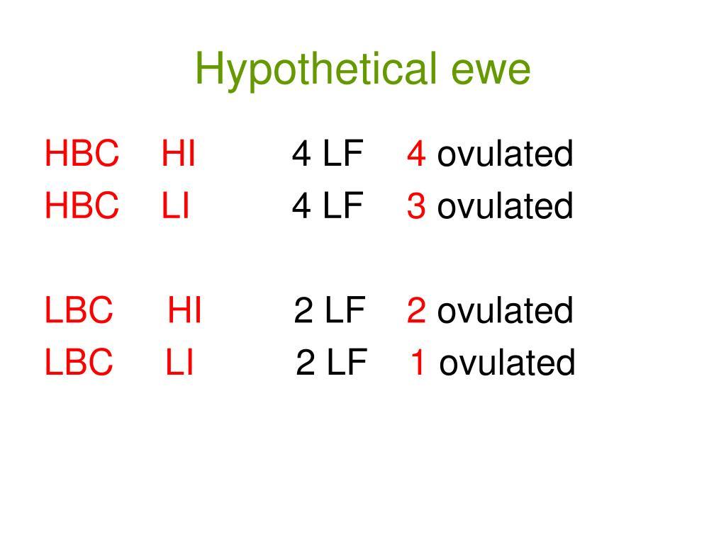 Hypothetical ewe
