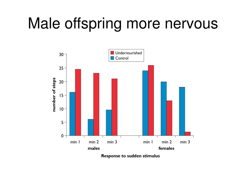 Male offspring more nervous