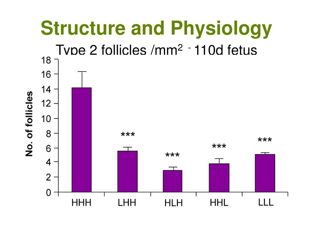 Structure and Physiology