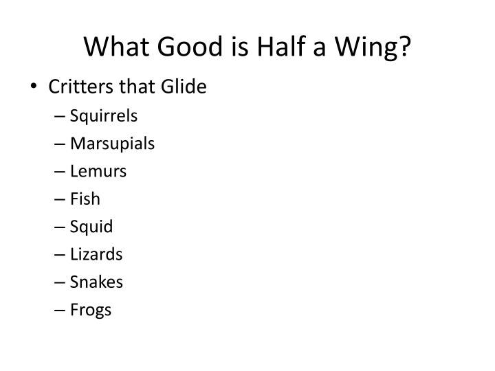 What Good is Half a Wing?
