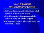 krr random roughness factor