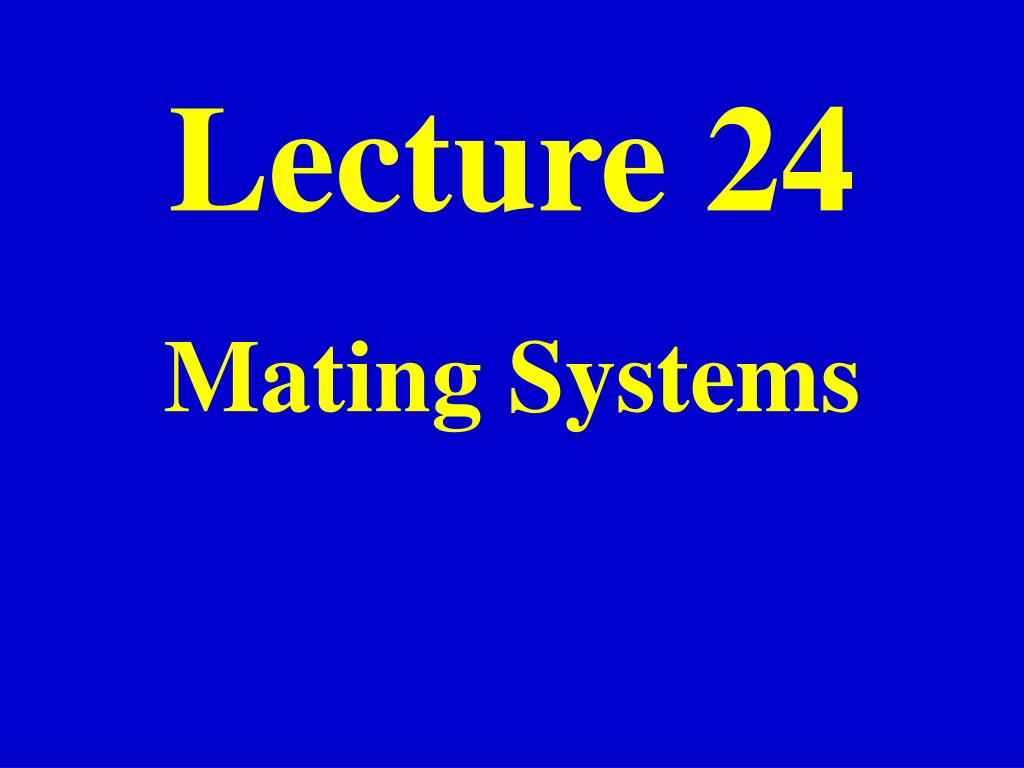 Lecture 24