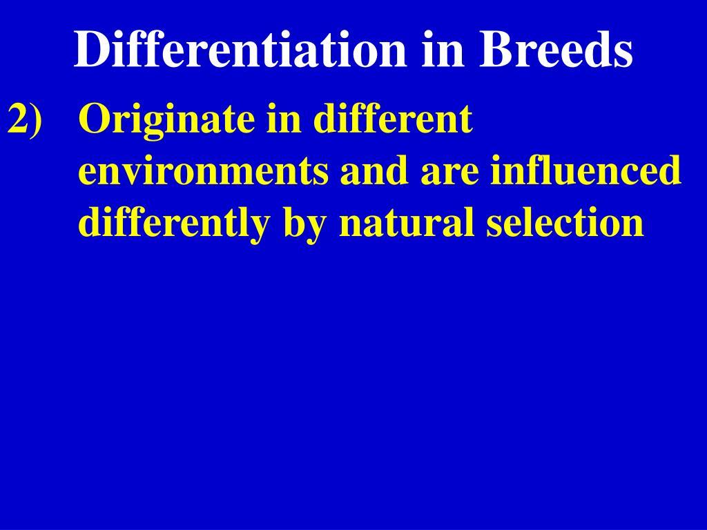 Differentiation in Breeds