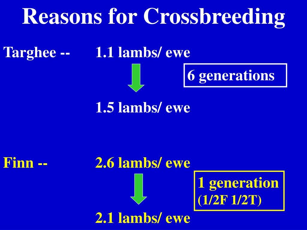 Reasons for Crossbreeding