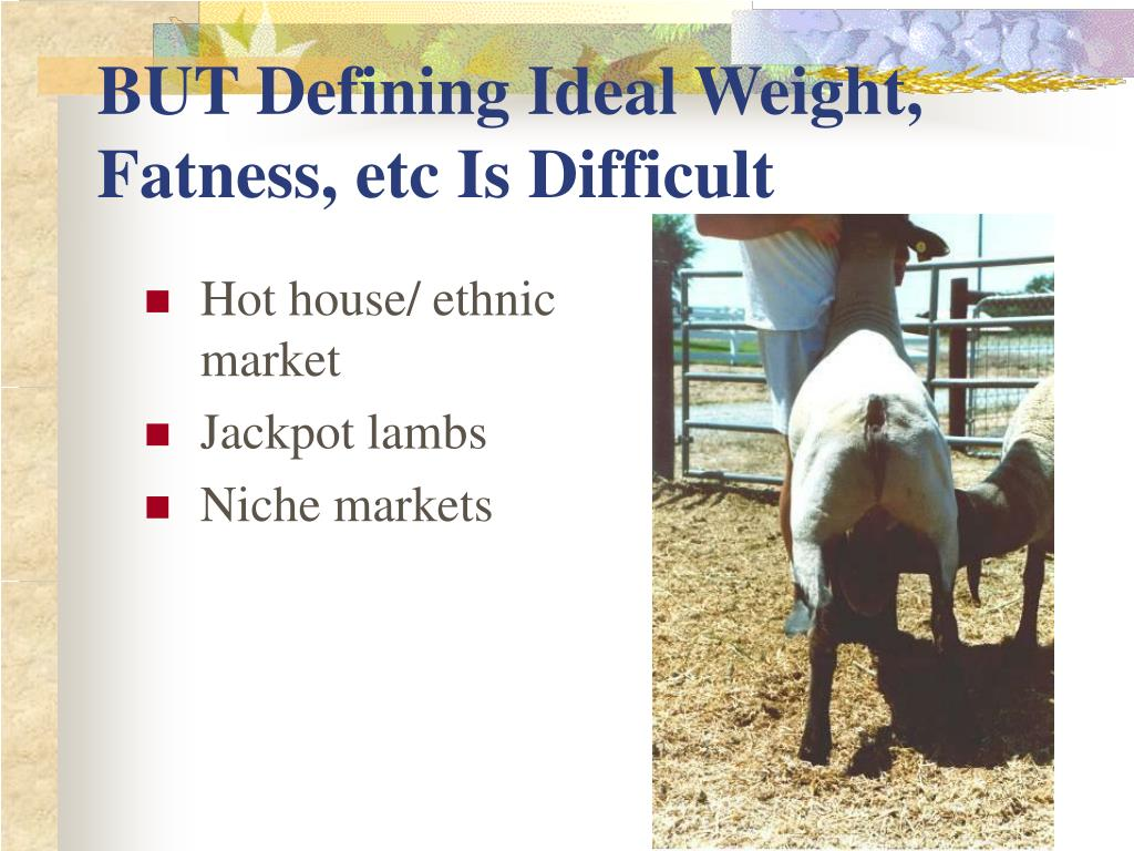BUT Defining Ideal Weight, Fatness, etc Is Difficult