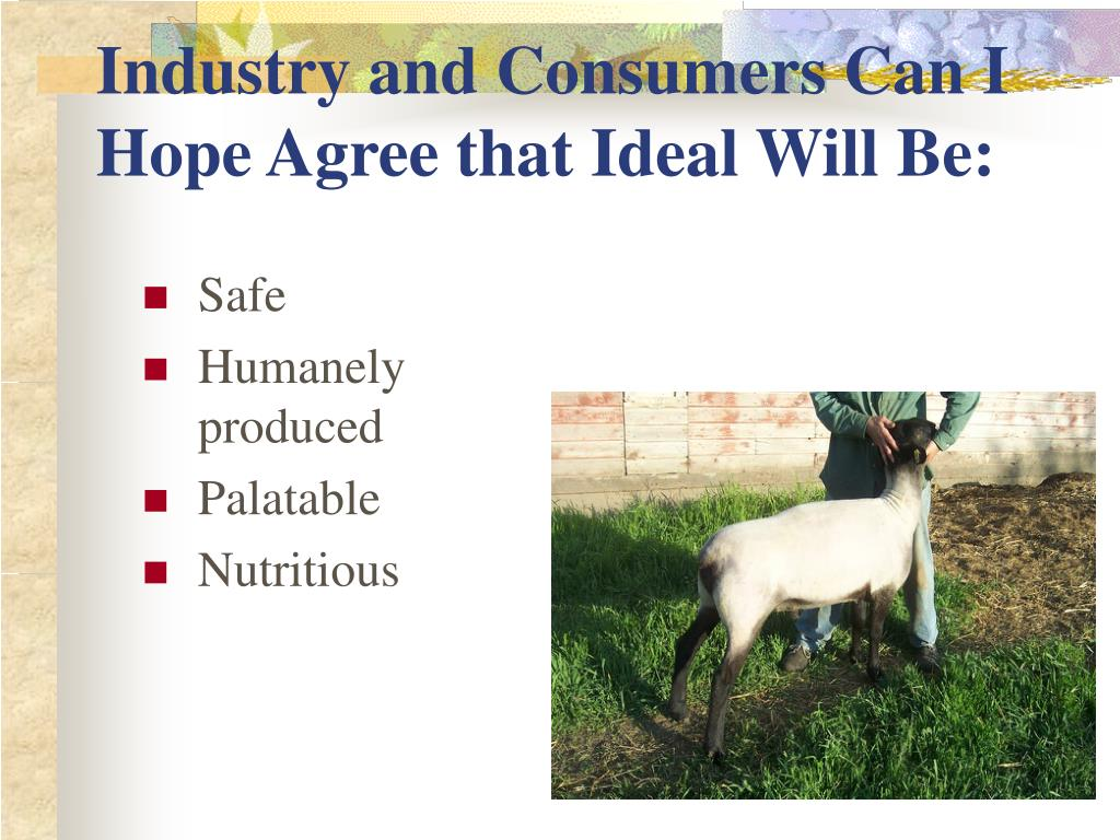 Industry and Consumers Can I Hope Agree that Ideal Will Be: