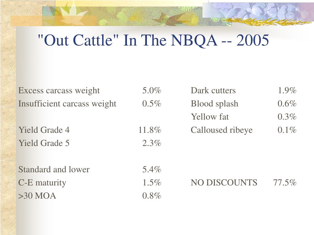 """Out Cattle"" In The NBQA -- 2005"