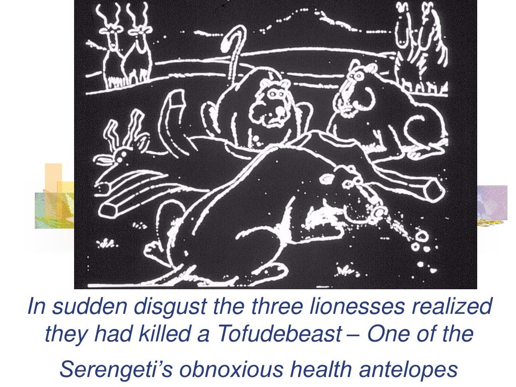 In sudden disgust the three lionesses realized they had killed a Tofudebeast – One of the Serengeti's obnoxious health antelopes
