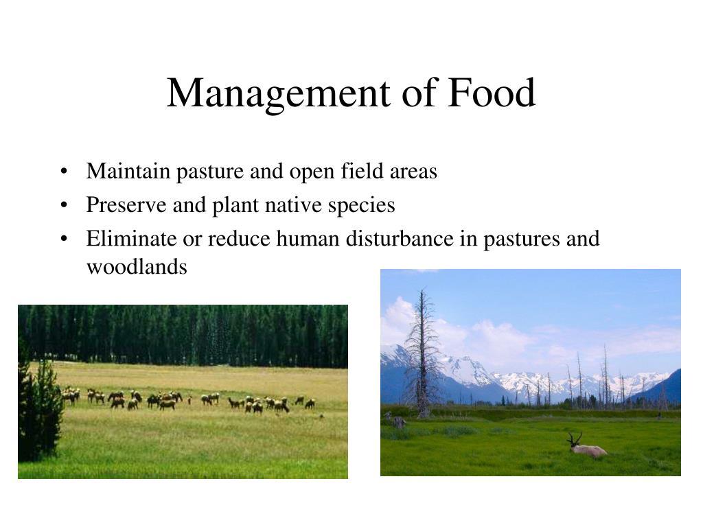 Management of Food