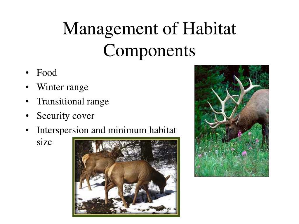 Management of Habitat Components