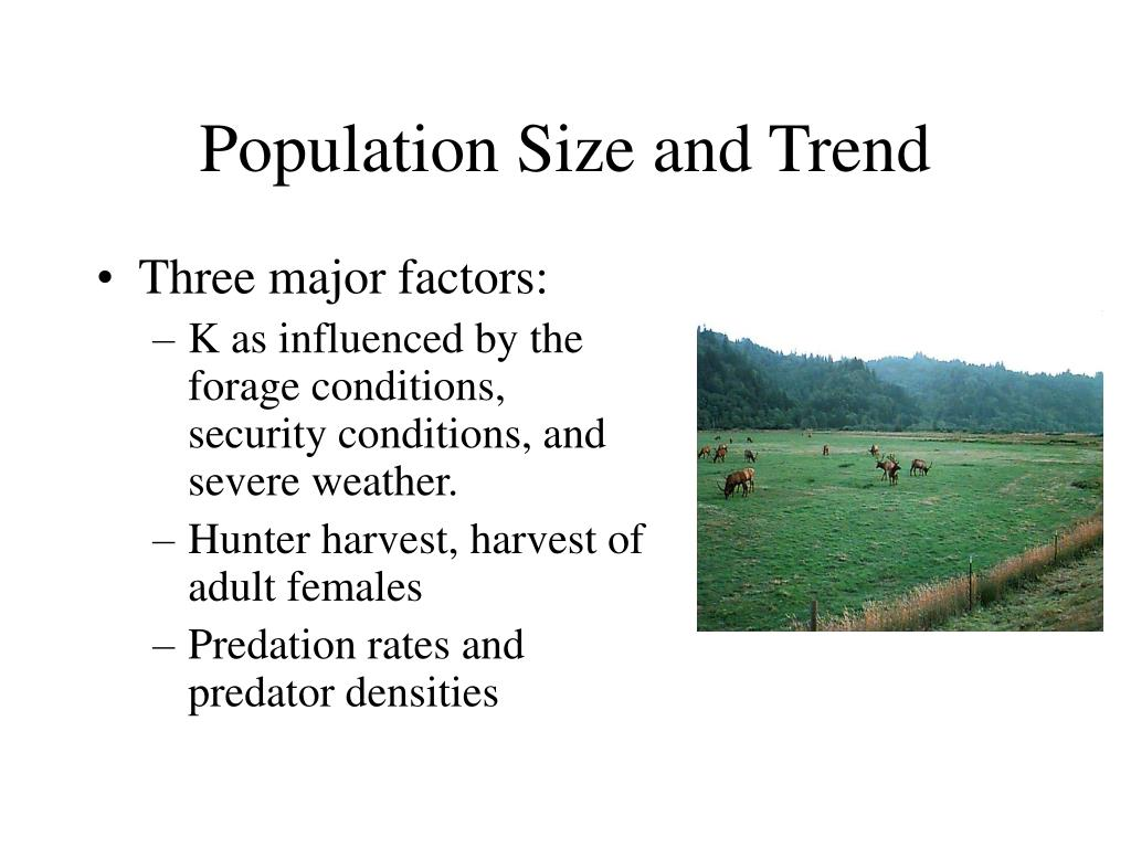 Population Size and Trend