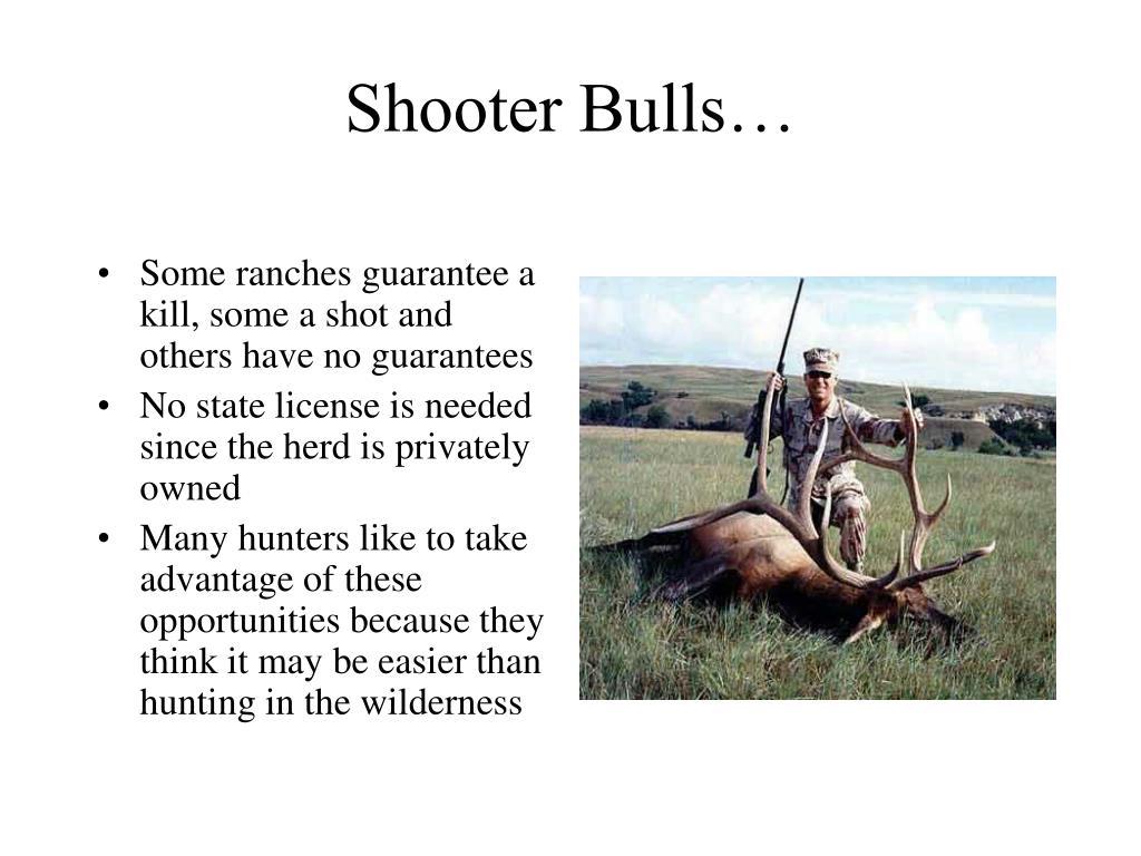 Shooter Bulls…