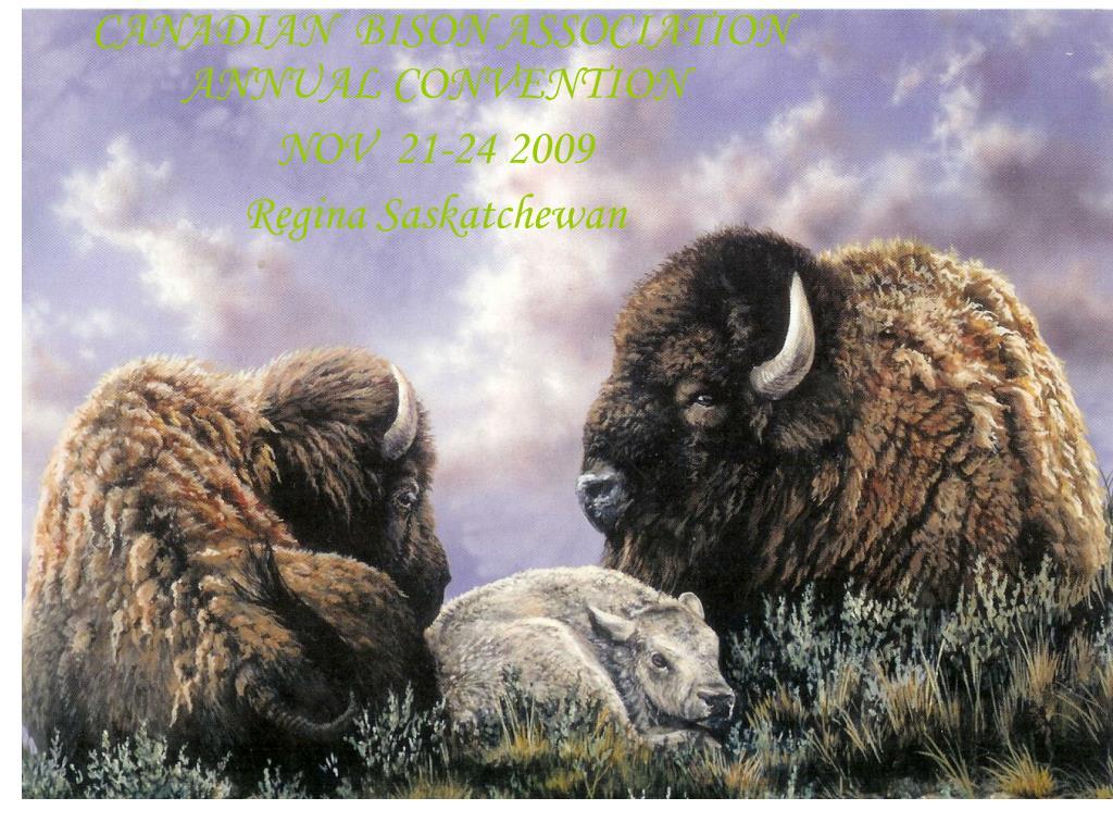 bison producers of alberta l.