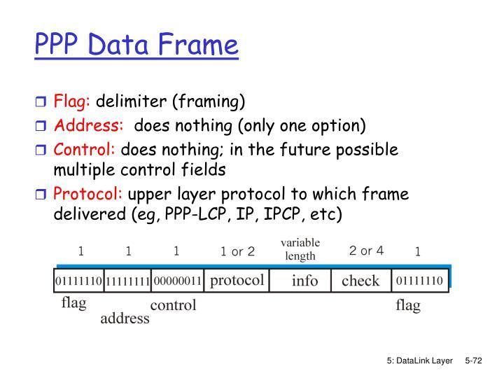 PPP Data Frame