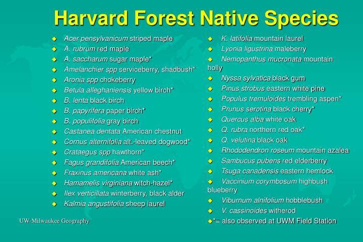 Harvard Forest Native Species
