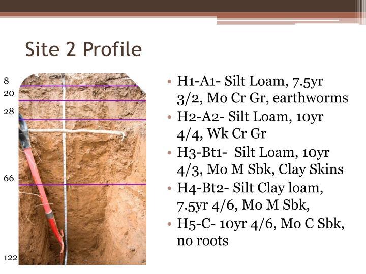 Site 2 Profile