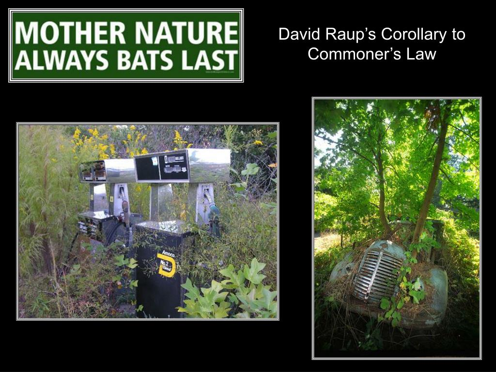 David Raup's Corollary to Commoner's Law