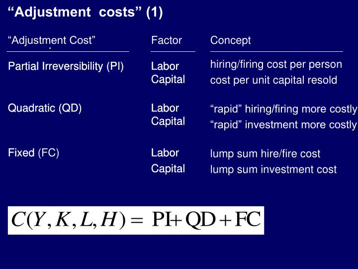 """Adjustment  costs"" (1)"