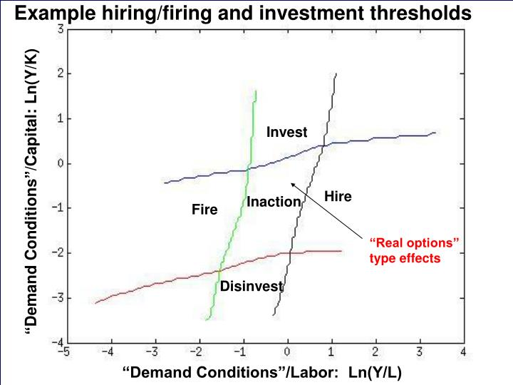 Example hiring/firing and investment thresholds