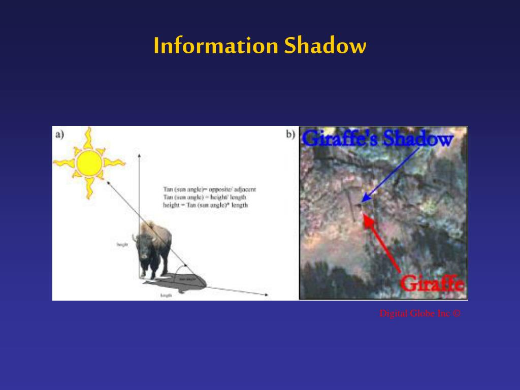 Information Shadow