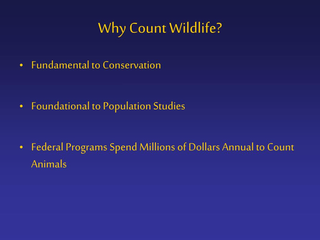 Why Count Wildlife?