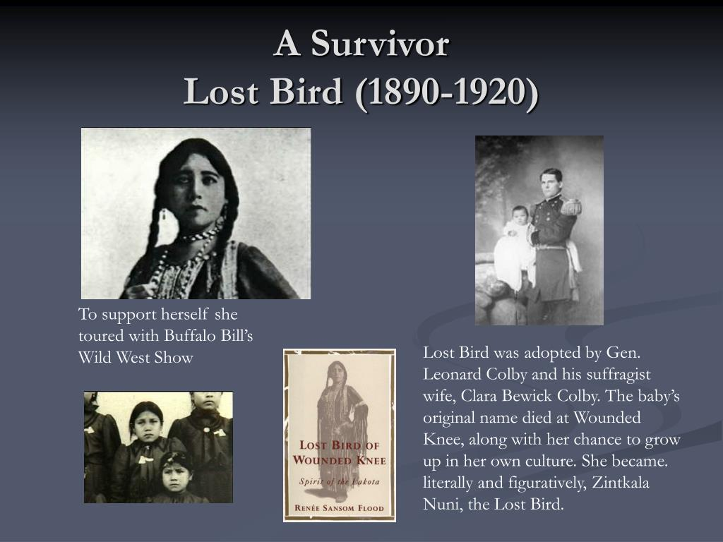A Survivor