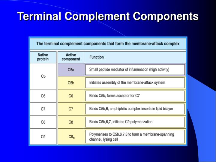 Terminal Complement Components