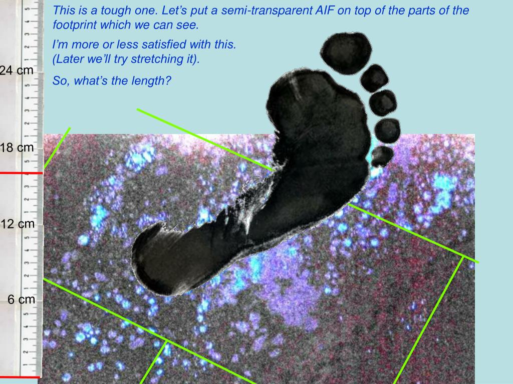 This is a tough one. Let's put a semi-transparent AIF on top of the parts of the footprint which we can see.