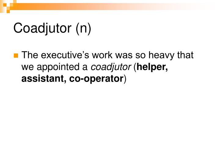 Coadjutor (n)
