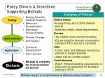 policy drivers incentives supporting biofuels