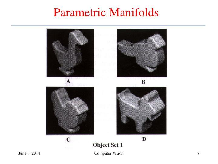 Parametric Manifolds