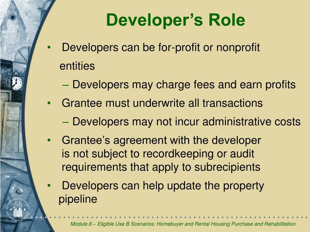 Developer's Role