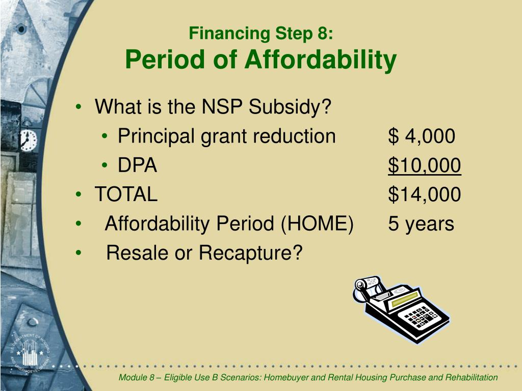What is the NSP Subsidy?